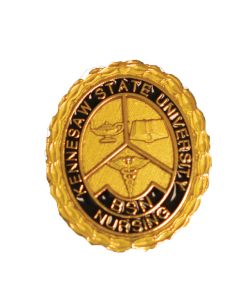 Image For Nursing Pins Gold