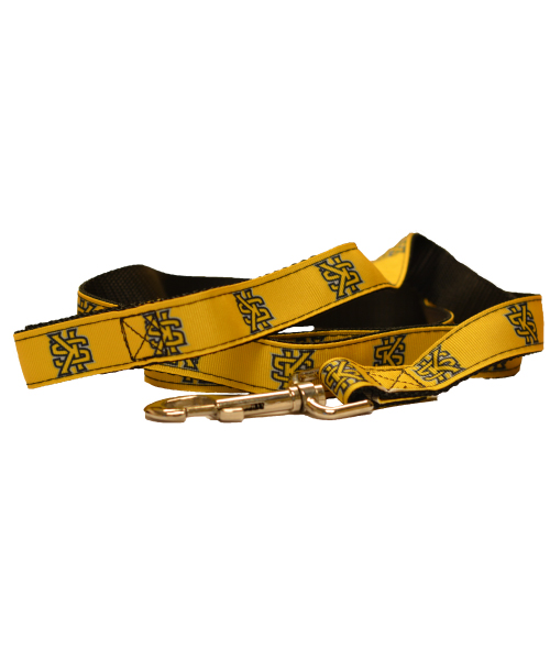 Cover Image For All Star Interlocking KS Dog Leash