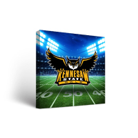 Image For Victory Tailgate Stadium Wall Art Canvas (18x24)