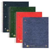 Image For Roaring Springs 3-Sub Notebook